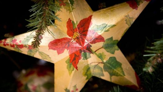 Festive Gift Vouchers
